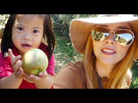 A FAMILY TRADITION! – CAMPING DAY 4