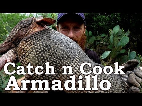 Catch and Cook ARMADILLO & LEPROSY! Ep14   GRASS TORPEDOS! South Texas Survival Challenge