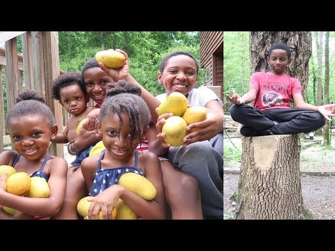 Camping Off Grid with Our 5 Vegan Kids!