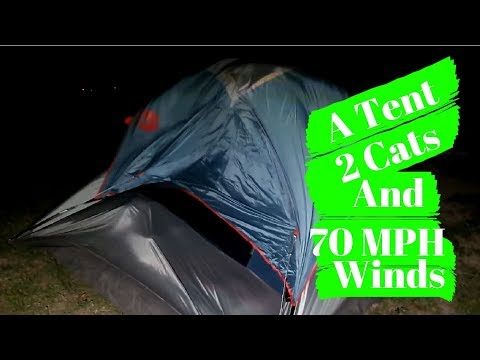 Crazy Winds While Tent Camping At Big Bend National Park//Full-Time Traveling Family//7 Day Roadtrip