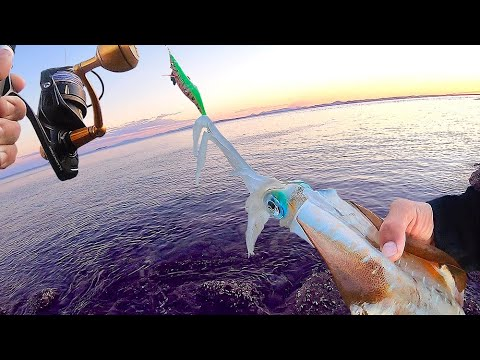Squid Jigging Breakfast! Deserted Island Provides Again – Solo Micro Boat Camping Part 3