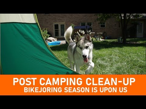 Doing Some Post Camp Cleanup  |  Bikejoring Season Is Upon Us!
