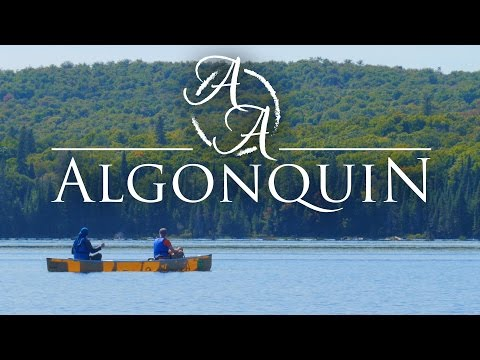 Algonquin Provincial Park in 4K   Canoe Camping and Bushcraft in Ontario, Canada
