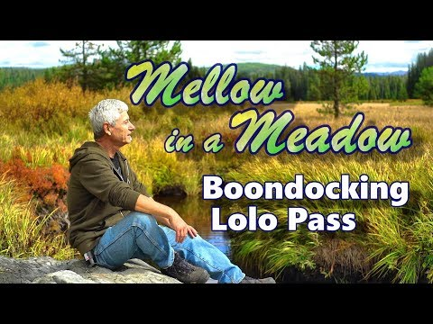 Mellow in a Meadow: Boondocking Lolo Pass
