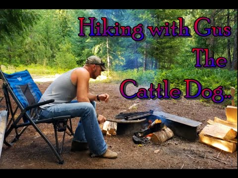 Truck Camping, Elk Steaks and Thunderstorms