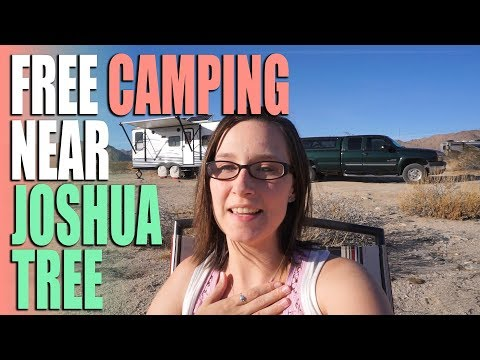 FREE BLM Camping Near Joshua Tree National Park – Campsite Review