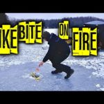 The Pike Bite was on Fire 🔥 Ice Fishing  with Tip Ups