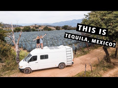 A  REAL Mexican Adventure | VAN LIFE | Mexico Travel Guide