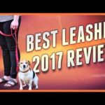 Best leash for dogs – 2017 review + accessories